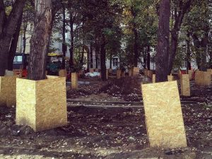 Документы на транспортировку древесины